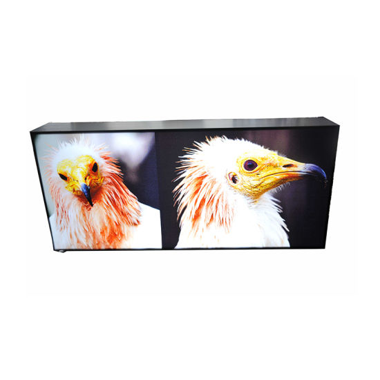 Ultra Slim 19mm Tebal Iklan Tahan Air Bingkai Snap LED Light Box